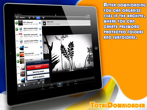 [iPad] Save your favorite online photos and videos for offline