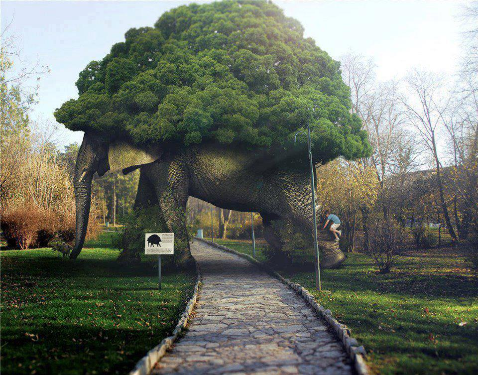 Elephant Tree Arch' Is A Man-Made Wooden Elephant With A Tree On
