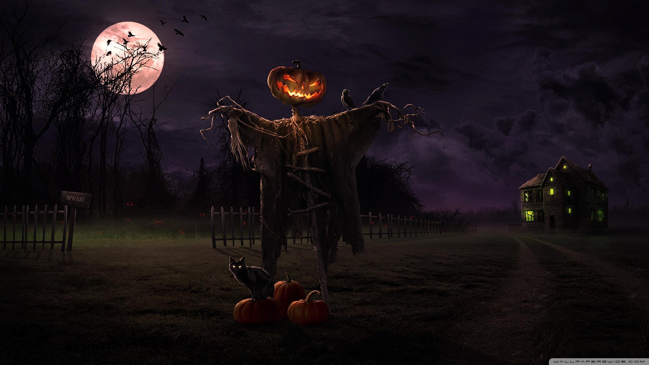 Beautiful Wallpaper Halloween Light - spooky_path-wallpaper-2560x1440  Image_218299.jpg?200