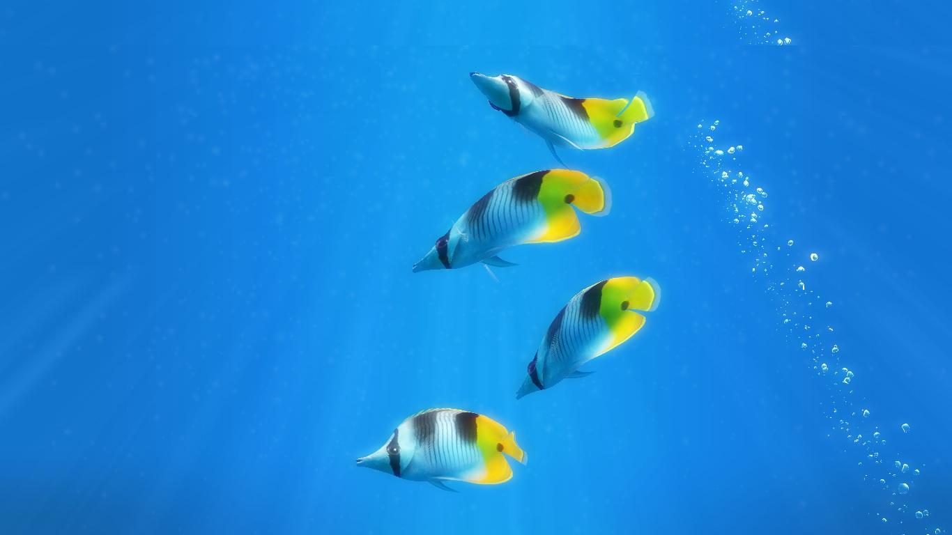 Transform your Windows desktop into a fish tank with Sim ...