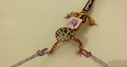 gecko-warrior-cosplay-2