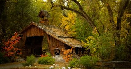 fall_1920x1080
