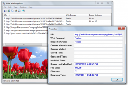 webcacheimageinfo for windows