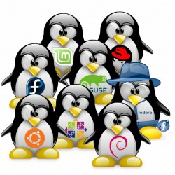 The Linux Family