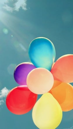 Colorful-Balloons-In-The-Sunlight-250x443