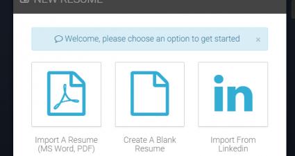 Online CV builder