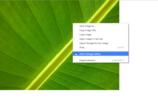 add to image gallery Chrome