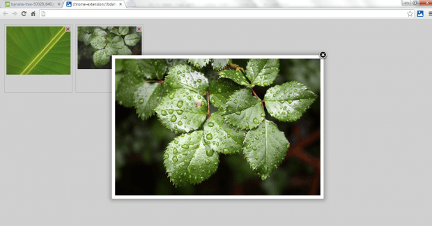 add to image gallery Chrome c