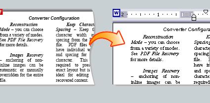 PDF to Word online g