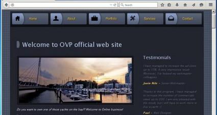 Online Video Promoter