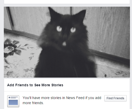 replace FB ads with adorable cats