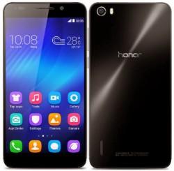Honor-Holly