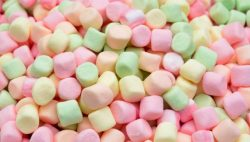 marshmallows-4634